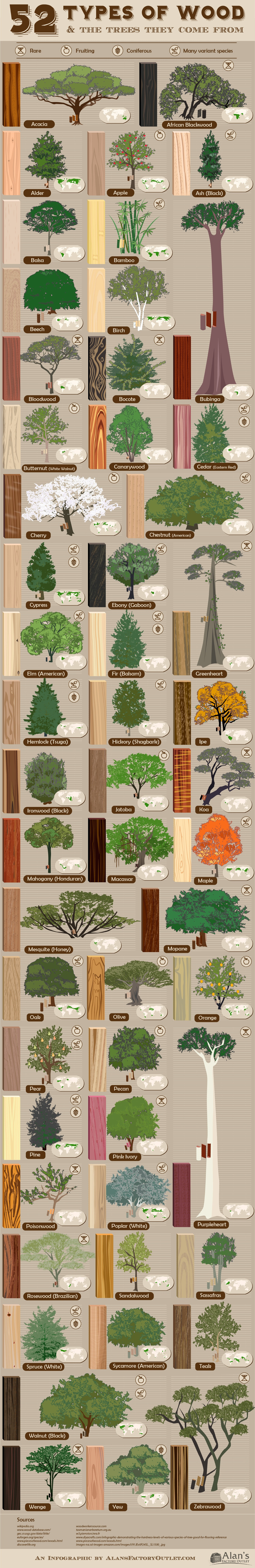 Glossary of Wood Types and the Trees They Originate From - Infographic