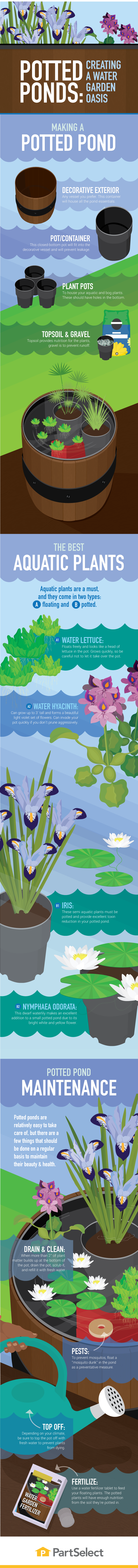How to Create a Potted Garden Pond - Infographic