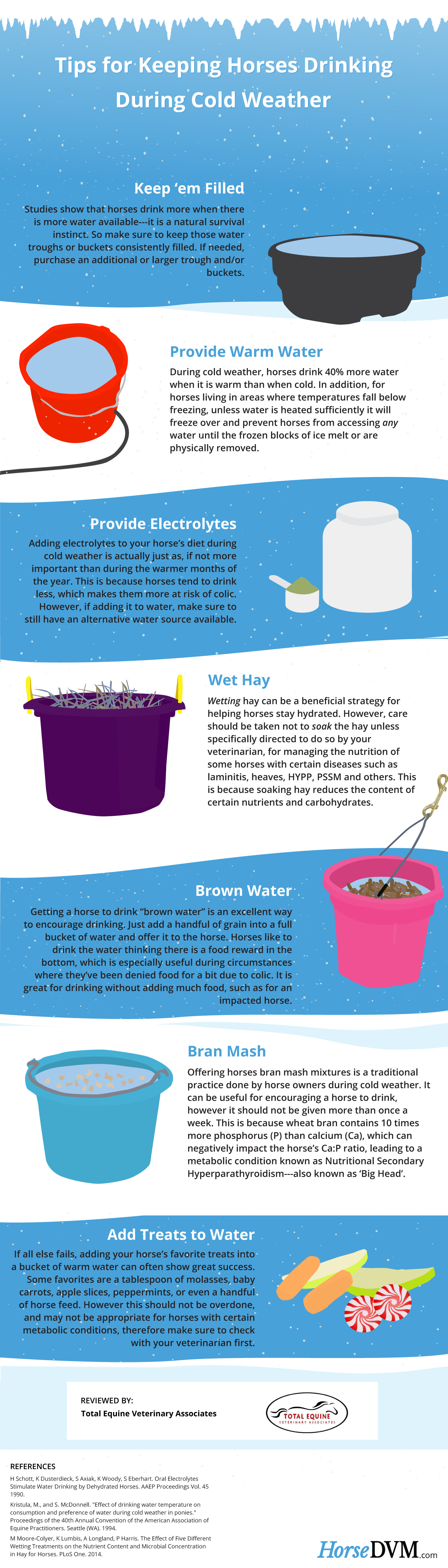 How to Keep Horses Hydrated in Cold Weather - Infographic