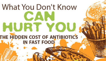 Antibiotic-Laced Food to Animals: Cause for Concern - Infographic