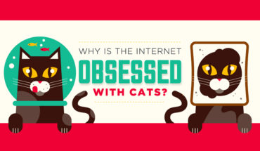 Cats Rule: At Home and On the Internet - Infographic