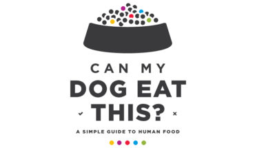 Guide to What Dogs Can and Cannot Eat - Infographic