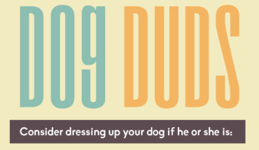 The Importance of Dog Duds - Infographic