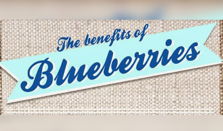 Blueberries: A Bonanza of Benefits - Infographic