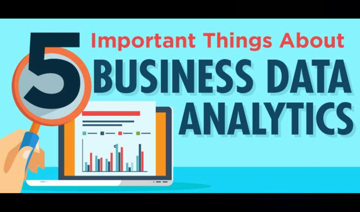 The Function and Importance of Business Data Analytics - Infographic