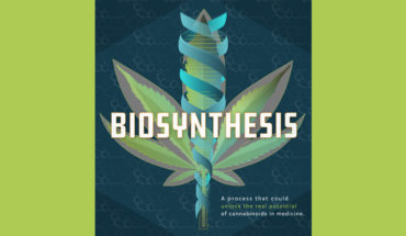 Biosynthesis: How Cannabis Can Be Converted to Powerful Medicine - Infographic