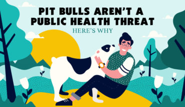 Doggie Racial Discrimination: Why Pit Bulls Aren't a Public Health Threat - Infographic