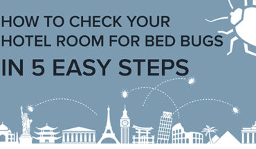 How to Avoid Sharing Your Hotel Bed with Bed bugs - Infographic