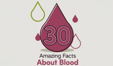 Bloody Trivia! 30 Unusual Facts About Blood - Infographic