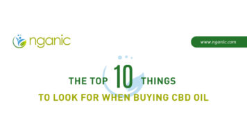 Buying the Best Cannabidiol(CBD) Oil: 10 Things You Must Check - Infographic