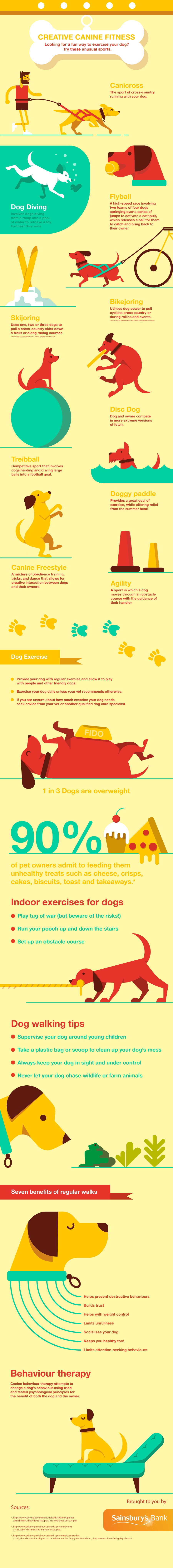 Creative Ways to Boost Canine Fitness - Infographic