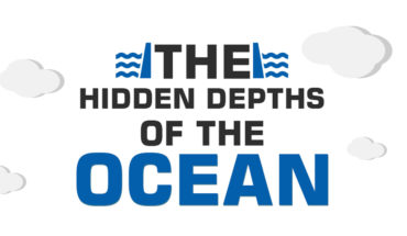 Dive Deep: Discover the Surreal Hidden Depths of the Ocean - Infographic