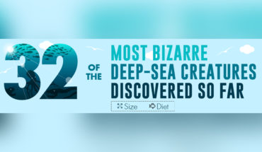 Glimpse into Ocean Depths: 32 Bizarre Deep-Sea Creatures Discovered So Far - Infographic
