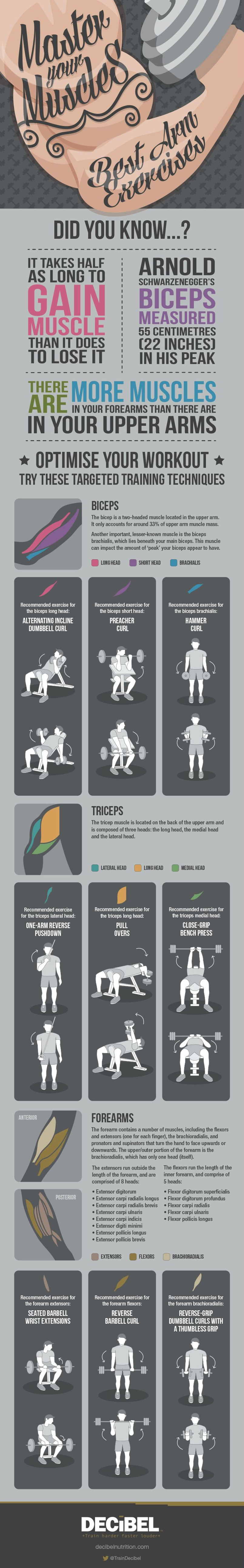 How to Develop the Best Arm Muscles Ever! - Infographic