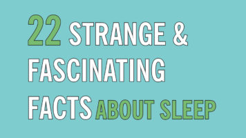 Tales of Insomnia, Dysania and Apnea: 22 Surprising Facts About Sleep - Infographic