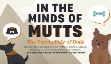 Why Dogs are Man's Best Friends: The Psychology of Dogs - Infographic