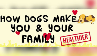 9 Ways Dogs Help Families Get Healthier and Happier - Infographic