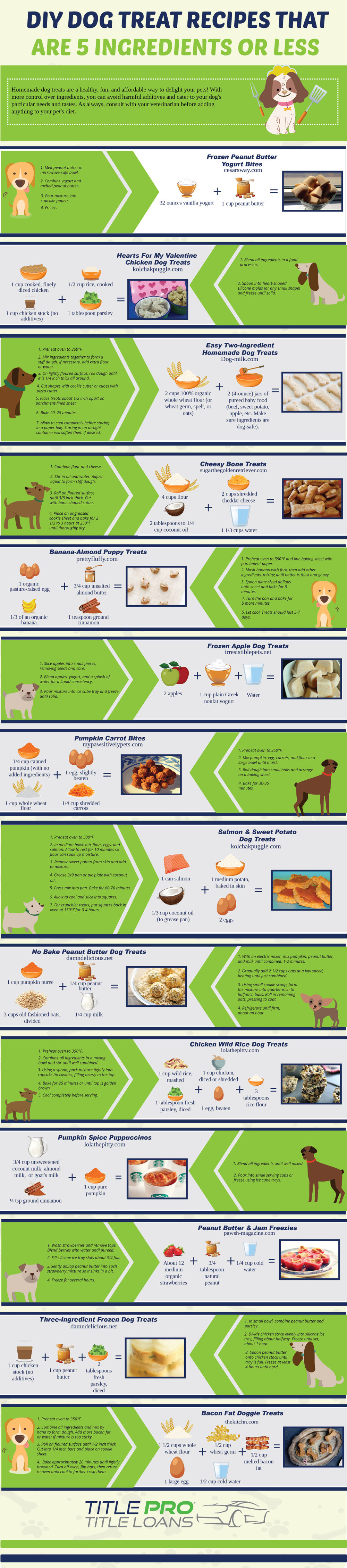 Homemade Dog Treat Recipes: Healthy, Delicious and Very Affordable! - Infographic