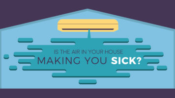 How Polluted is the Air at Home? - Infographic