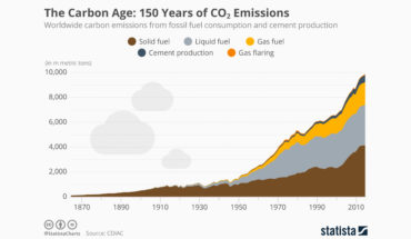 Will the Carbon Age Spell the Death of a Healthy World? - Infographic
