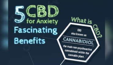 CBD and Anxiety Disorder Treatment: 5 Amazing Benefits - Infographic