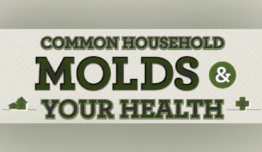 How Household Molds are Dangerous for Your Health - Infographic