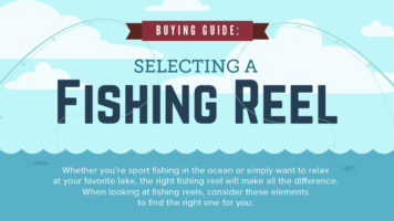 How to Buy the Right Fishing Reel - Infographic