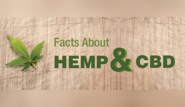 Deconstructing the Difference Between Hemp and CBD - Infographic
