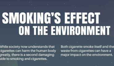 Smoking Kills: Not Just Humans but the Environment Too! - Infographic