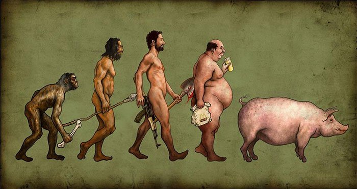 15 Witty but True Illustrations of Evolution