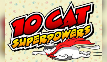 Cats have Amazing Cat-abilities and Cat-Powers: 10 Examples that Prove It! - Infographic