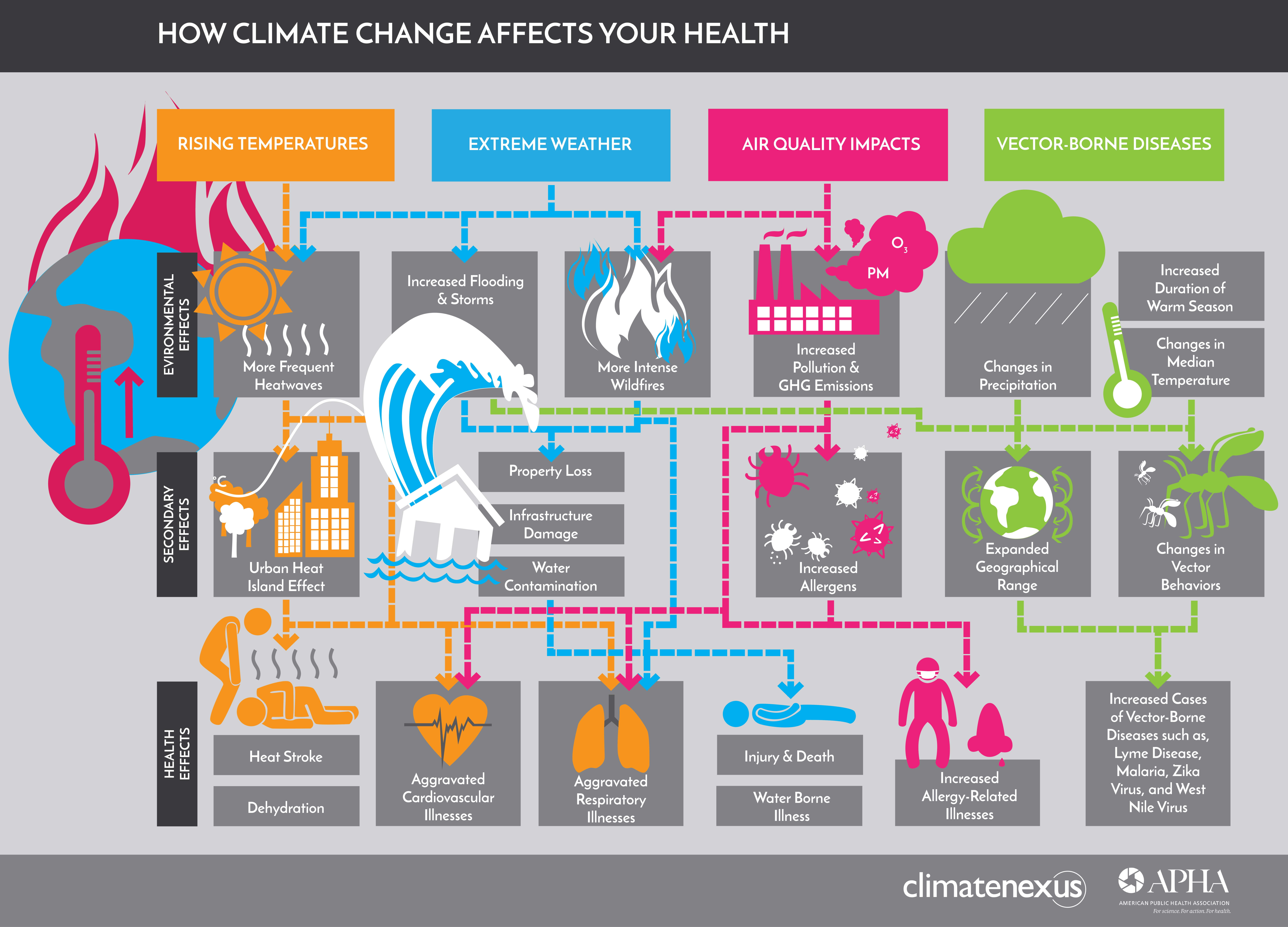 Climate Change and Your Health: The Devastating Connection - Infographic