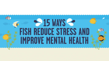 Fish Therapy: 15 Proven Ways It Improves Mental Health - Infographic