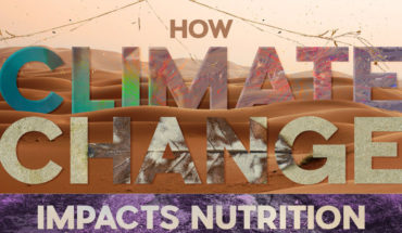 How Climate Change is Negatively Affecting Global Nutrition Standards - Infographic