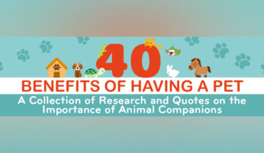 The Endless Benefits Your Pet Gifts You! - Infographic