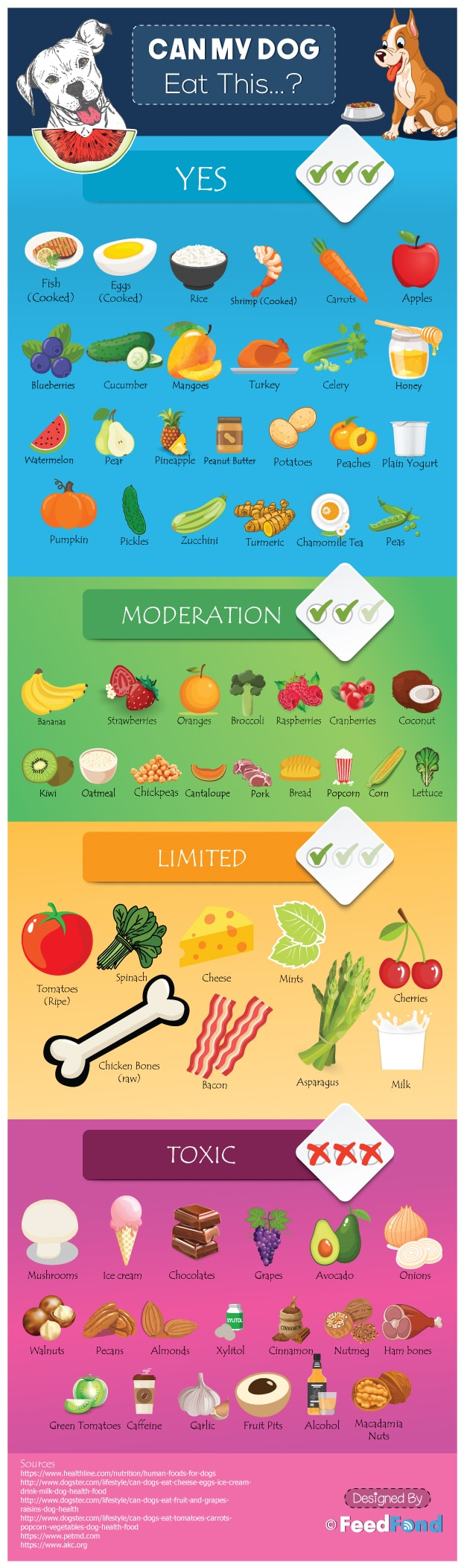 Fruits and Vegetables that Can Be Shared with Your Dog - Infographic