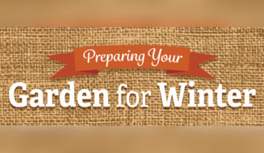 How to Protect and Make Your Garden Winter-Ready - Infographic