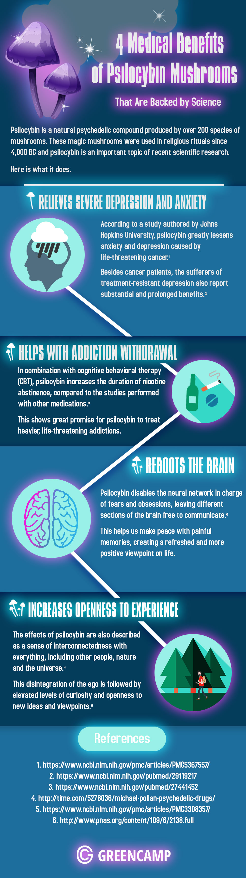 Why 'Magic' Mushrooms Make Much Medical Sense! - Infographic