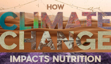 The Climate Change Battlefield: How Nutrition is at Risk - Infographic