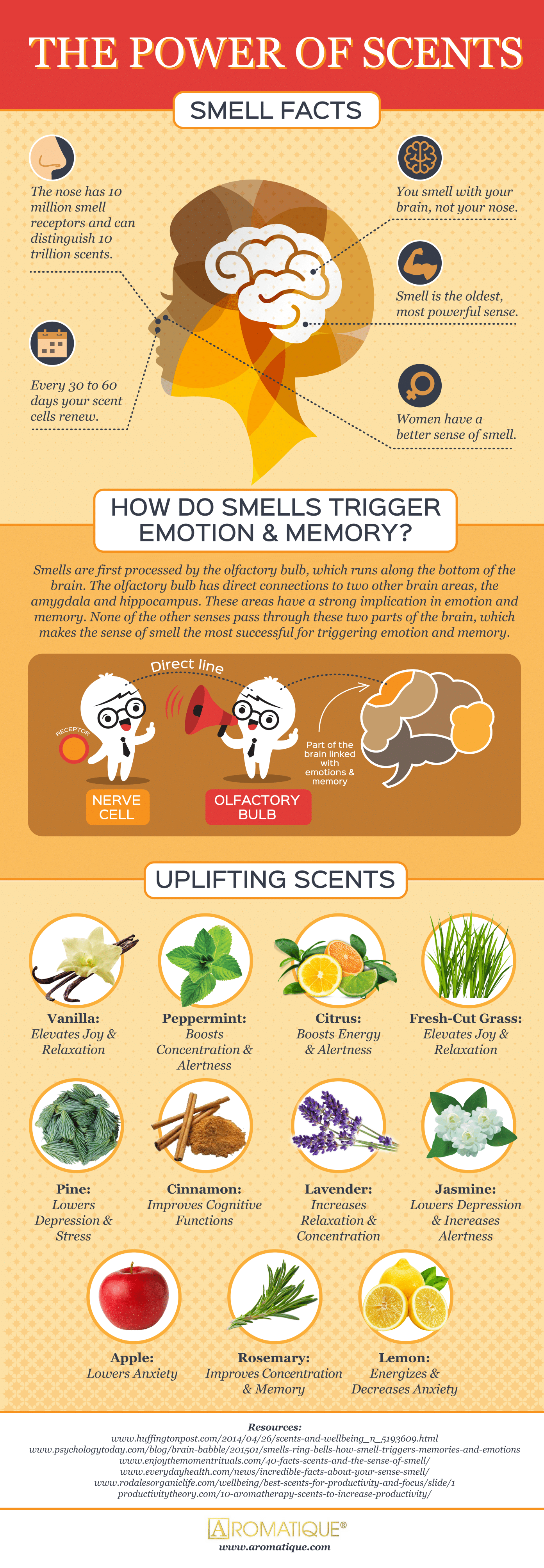 The Most Powerful Sense of All: All About Smell - Infographic