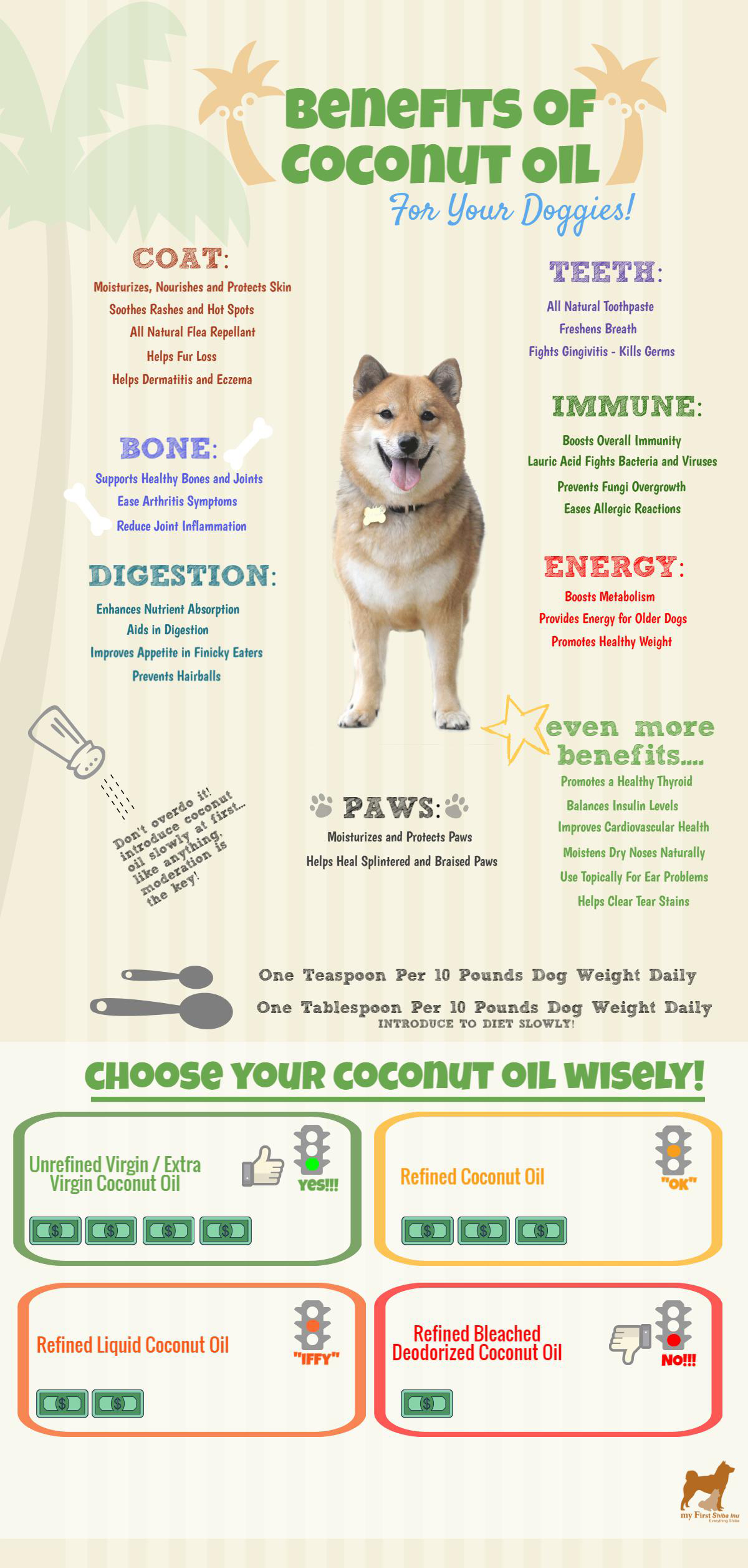 Do You Know that Coconut Oil is a Superfood for Dogs? - Infographic