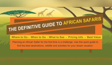 Your One-Stop Guide to Planning a Grand African Safari Vacation - Infographic