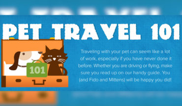 The Comprehensive Guide to Traveling with Pets - Infographic