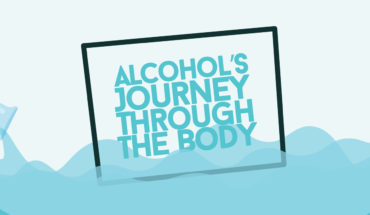 What's Happening Inside Your Body as Alcohol Travel Through - Infographic