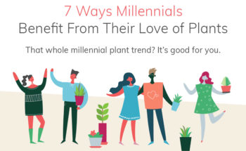 7 Reasons Why the Millennial Plant Trend is a Great Idea! - Infographic