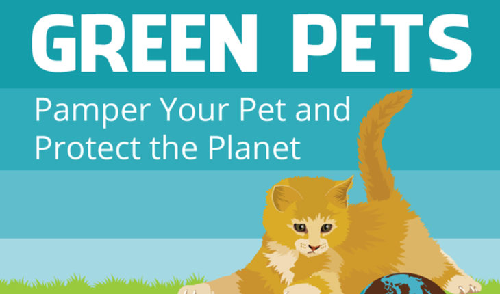 How to Show Your Love to Pets and Care for Your Planet Too - Infographic