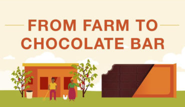 Sustainable Cocoa: How Inclusive Farmer Development Strategies is Changing the Game - Infographic