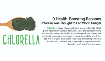 9 Reasons Why Chlorella Algae is a Superfood - Infographic