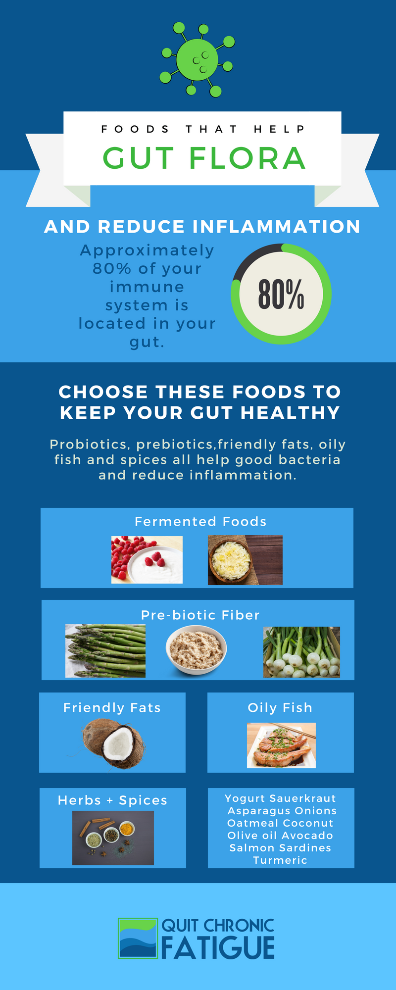 Which Foods Keep Your Gut Flora Healthy - Infographic