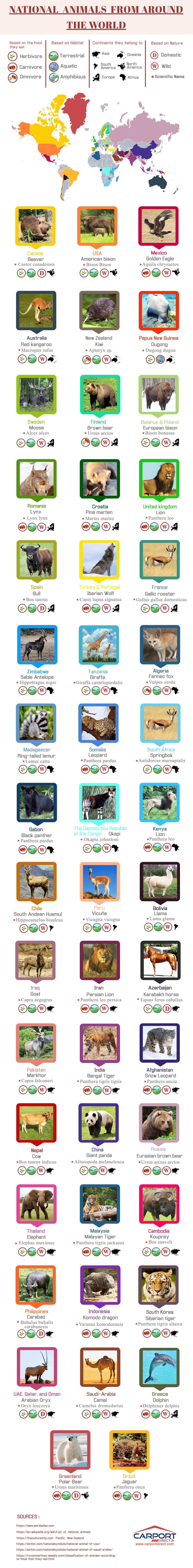 47 of the World's Best Loved 'National' Animals - Infographic